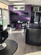 established salon business red - 3