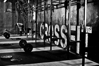 extremely systemized profitable crossfit - 1