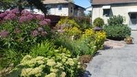 established residential gardening company - 1