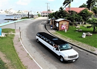jungle limo tours - 3