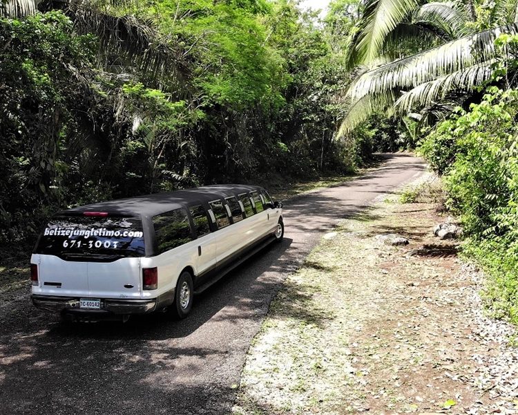 jungle limo tours - 5